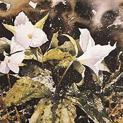 Spring-floral